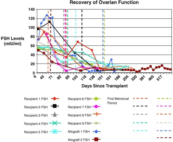 Figure 4: Recovery of ovarian function. The eight fresh transplant cases showed a dramatic decline in day 3 serum FSH by 80–140 days post-operatively corresponding approximately to the resumption of menses. The results of the microvascular whole-ovary transplant. And the cortical tissue allotransplant are not significantly different from cortical iso grafts.