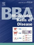 bba-cover