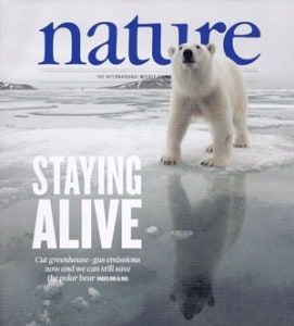 Preserving polar bear ovaries and sperm to protect against their eventual extinction.