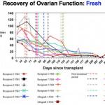 ovary-transplantation